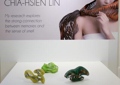 Chia-Hsien-Lin-vetrina